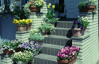 050423_flowery_porch